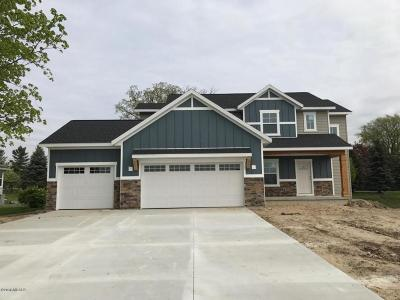 Byron Center Single Family Home For Sale: 1572 Chase Lane SW