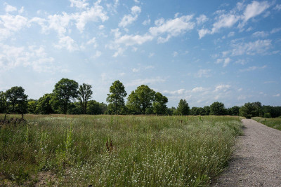 Ottawa County Residential Lots & Land For Sale: 10341 State Road