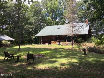 Howard City Single Family Home For Sale: 8998 W County Line Road