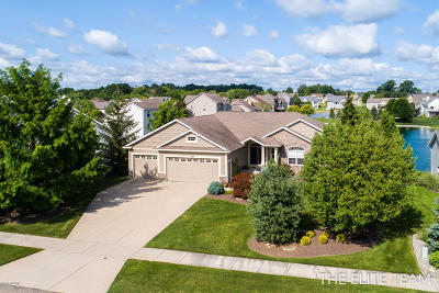Jenison Single Family Home For Sale: 8233 Midpark Drive