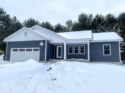 Big Rapids Single Family Home For Sale: 21515 University Drive