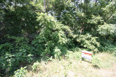 Paw Paw Residential Lots & Land For Sale: 29063 Red Arrow Highway #2