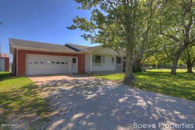 Hudsonville Single Family Home For Sale: 3410 32nd Avenue