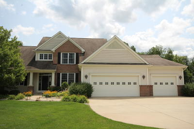 Kalamazoo County Single Family Home For Sale: 14579 Cb Macdonald Way