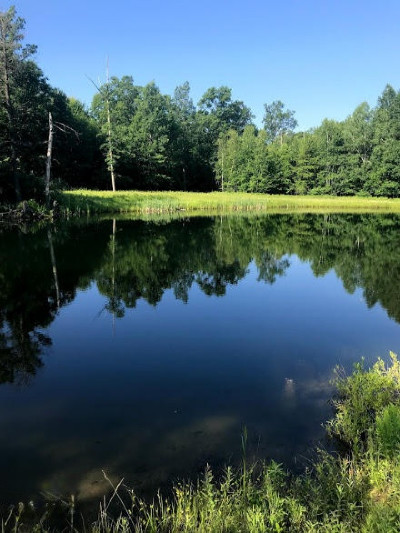 Benzie County, Charlevoix County, Clare County, Emmet County, Grand Traverse County, Kalkaska County, Lake County, Leelanau County, Manistee County, Mason County, Missaukee County, Osceola County, Roscommon County, Wexford County Residential Lots & Land For Sale: E 72nd Street