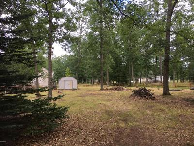 Manistee County Residential Lots & Land For Sale: Susan Street