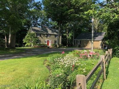 Whitehall Single Family Home For Sale: 217 Pinecrest Road