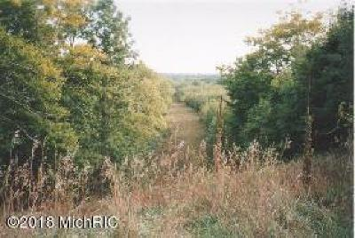 Benzie County, Charlevoix County, Clare County, Emmet County, Grand Traverse County, Kalkaska County, Lake County, Leelanau County, Manistee County, Mason County, Missaukee County, Osceola County, Roscommon County, Wexford County Residential Lots & Land For Sale: River Rd