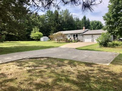 Greenville Single Family Home For Sale: 11980 W Wise Road