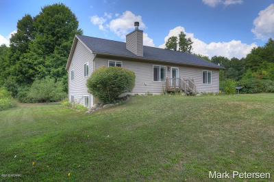 Ionia County Single Family Home For Sale: 2678 Lucky Lane
