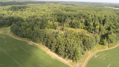 Big Rapids Residential Lots & Land For Sale: 16750 Newcosta Avenue