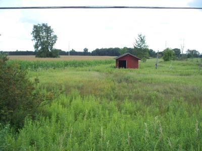 Big Rapids Residential Lots & Land For Sale: Coolidge Road