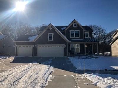 Jenison Single Family Home For Sale: 3278 Lowingside Drive