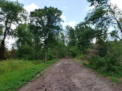Eaton County Residential Lots & Land For Sale: Love Highway
