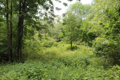 Grand Rapids Residential Lots & Land For Sale: 0-290 NW Leonard