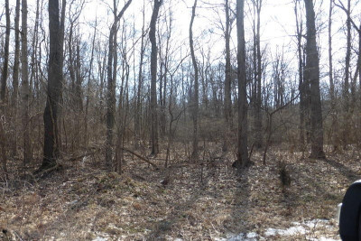 Niles Residential Lots & Land For Sale: 1903 Bond Street