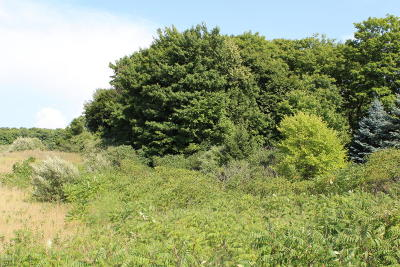 Mason County Residential Lots & Land For Sale: S Pere Marquette Hwy