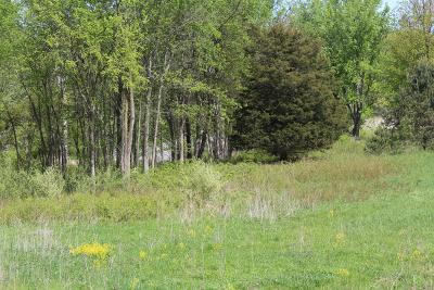 Kent County Residential Lots & Land For Sale: 8075 B 28th St #Parcel B