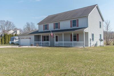 Schoolcraft Single Family Home For Sale: 5287 W R Avenue