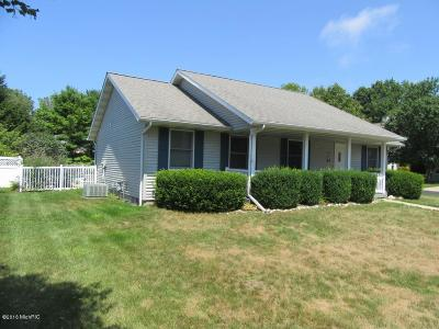 South Haven MI Single Family Home Active Backup: $325,000
