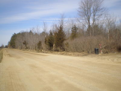 Clinton County, Gratiot County, Isabella County, Kent County, Mecosta County, Montcalm County, Muskegon County, Newaygo County, Oceana County, Ottawa County, Ionia County, Ingham County, Eaton County, Barry County, Allegan County Residential Lots & Land For Sale