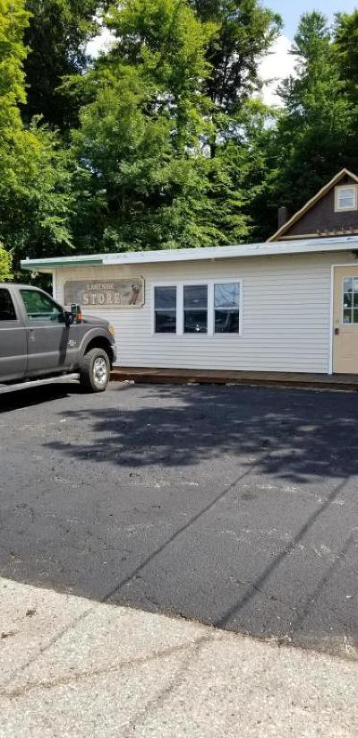 Saranac Single Family Home For Sale: 8773 Morrison Lake Road