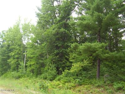 Montcalm County Residential Lots & Land For Sale: Lot #3 Little Creek