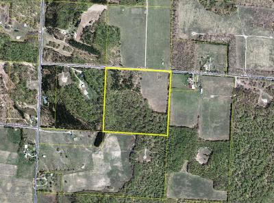 Manistee County Residential Lots & Land For Sale: Potter Road