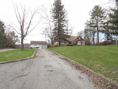 Bear Lake Single Family Home For Sale: 9433 13 Mile Road