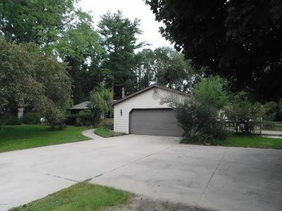Newaygo Single Family Home For Sale: 1161 Croton Drive