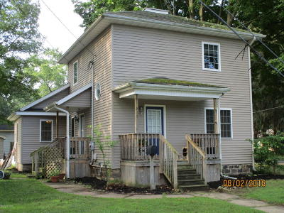 Albion Single Family Home For Sale: 517 Crandall Street