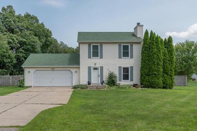 Vicksburg Single Family Home For Sale: 11279 S Sprinkle Road