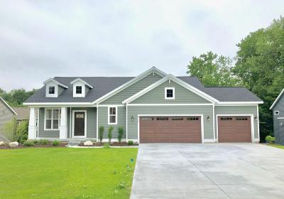 Hudsonville Single Family Home For Sale: 4216 Unity Drive
