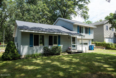 Spring Lake Single Family Home For Sale: 13915 Taft Street