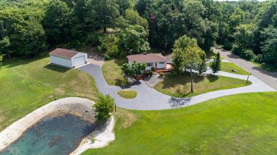 Battle Creek Single Family Home For Sale: 4701 Jones Road N