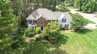 Holland, West Olive Single Family Home For Sale: 2153 Woodlark Drive