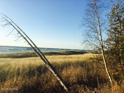 Oceana County Residential Lots & Land For Sale: 1-14 A Scenic Drive