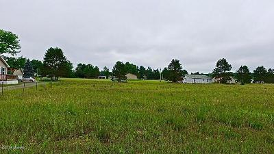 Lake County Residential Lots & Land For Sale: 7374 N Cedar Drive
