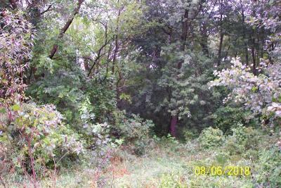 Holland, West Olive Residential Lots & Land For Sale: 61st Street