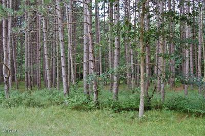 Canadian Lakes MI Residential Lots & Land For Sale: $1,000
