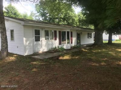 Big Rapids Single Family Home For Sale: 18516 Arthur Road