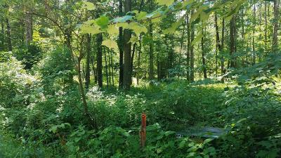 Oceana County Residential Lots & Land For Sale: Kent Road #LOT C