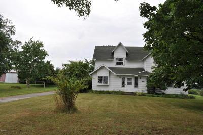 Single Family Home For Sale: 21837 Kenowa Avenue