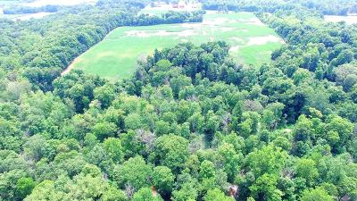 Berrien County, Branch County, Cass County, Calhoun County, Hillsdale County, Jackson County, Kalamazoo County, Van Buren County, St. Joseph County Residential Lots & Land For Sale: 1 M 43 Highway