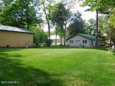 Newaygo Single Family Home For Sale: 7966 Main Street