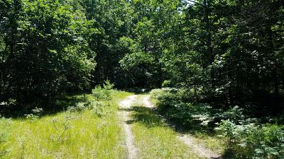 Oceana County Residential Lots & Land For Sale: Kent Road #LOT N