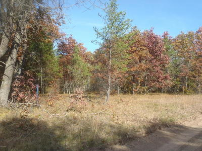 Lake County Residential Lots & Land For Sale: B 17-B 42nd