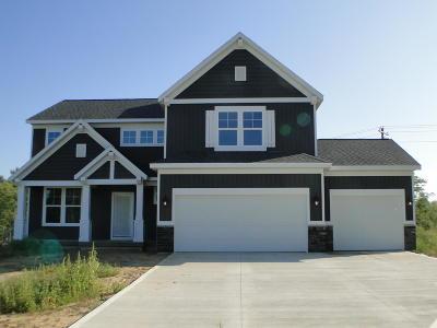 Allendale Single Family Home For Sale: 10800 Marsh Avenue