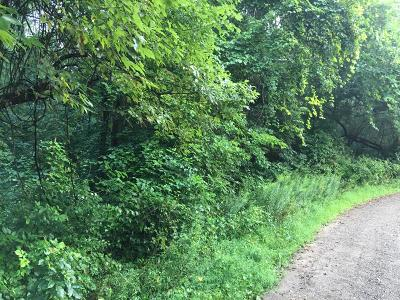 Allegan County Residential Lots & Land For Sale: Front St Street