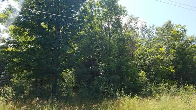 Oceana County Residential Lots & Land For Sale: S 142nd Avenue